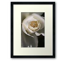 Pure Heart Framed Print