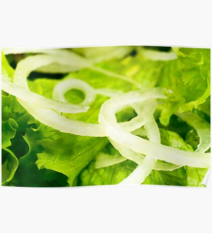 Macro view of the leaves of lettuce and onion rings in a salad Poster