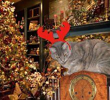 Christmas Kitty by glennmp