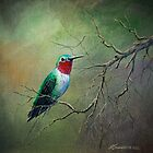 Ruby Throated Hummingbird by Rich Summers