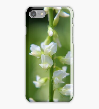White Sweet-clover iPhone Case/Skin
