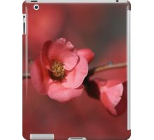 Spring Richness iPad Case/Skin