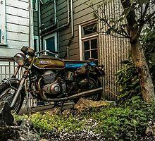 Backyard Benelli by GasStationB