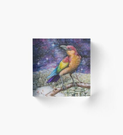 Rainbow Crow Acrylic Block