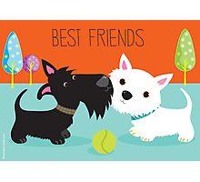 Best Friends Photographic Print