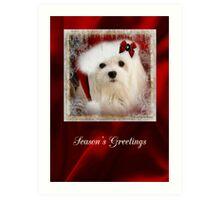Snowdrop the Maltese Christmas Card Art Print