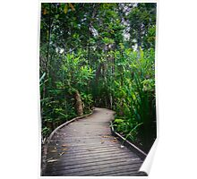 Jungle Boardwalk Poster