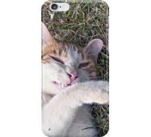 Cat smiling iPhone Case/Skin