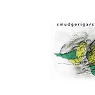 smudgerigars by Matt Mawson