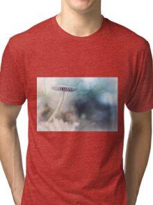 Dreamy Mushroom Tri-blend T-Shirt
