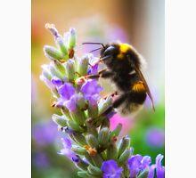 Humble Bumblebee Unisex T-Shirt