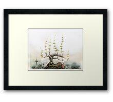 Black Pine Framed Print