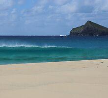Blinky Beach, Lord Howe Island by opensea