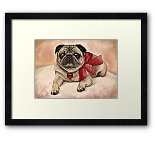 Christmas pug with a red bow  Framed Print