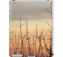 sunset through the trees iPad Case/Skin