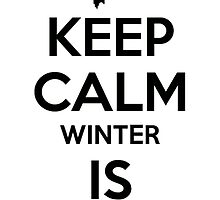 keep calm winter is coming by pedro rocker