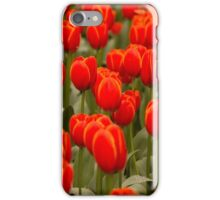 Verandi Tulips iPhone Case/Skin