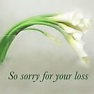 Calla Lilies - Loss by Marilyn Cornwell