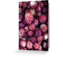 Wild strawberries Greeting Card