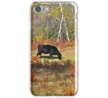 Grazing Alone iPhone Case/Skin