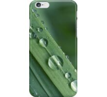 Waterdrops on a grass iPhone Case/Skin