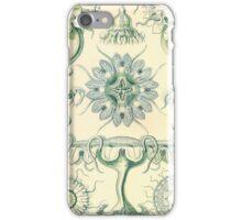 Discomedusae - Ernst Haeckel  iPhone Case/Skin