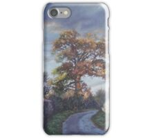 Tree Lined Countryside Road iPhone Case/Skin