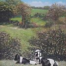 Cows sitting by hill relaxing by martyee