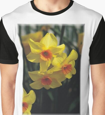 Daffodiles Graphic T-Shirt