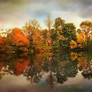 Twin Pond Reflections by Jessica Jenney