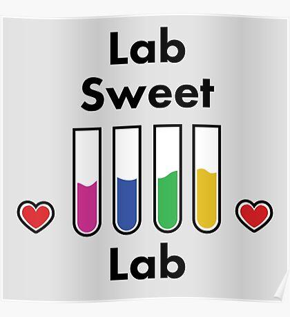 Lab sweet lab Poster