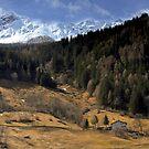Winter in Valtellina by annalisa bianchetti