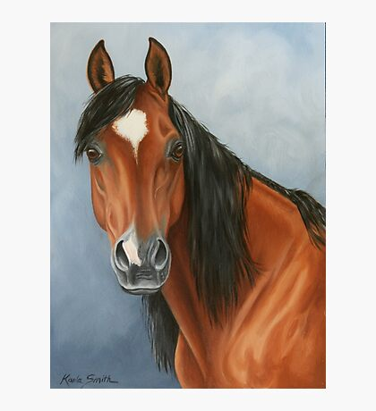 Arabian Filly Photographic Print