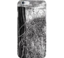 The Fence... iPhone Case/Skin