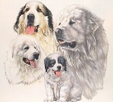 Great Pyrenees by BarbBarcikKeith