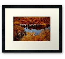 Death Valley's Salt Creek Framed Print