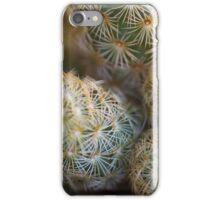 succulent plant iPhone Case/Skin