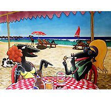 The Dolphin Shack Photographic Print