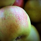 Autumn Apples by debidabble