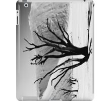 Dead Vlei with dead trees in desert landscape of Namib BW 01 iPad Case/Skin