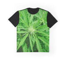 Marijuana Cannabis Weed Pot Plant Graphic T-Shirt