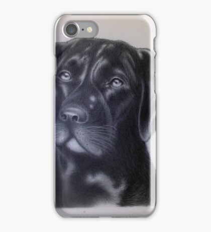 Chocolate Lab iPhone Case/Skin
