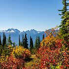 Revelstoke Autumn Day  by RevelstokeImage
