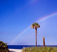 Rainbows and Palms by njordphoto