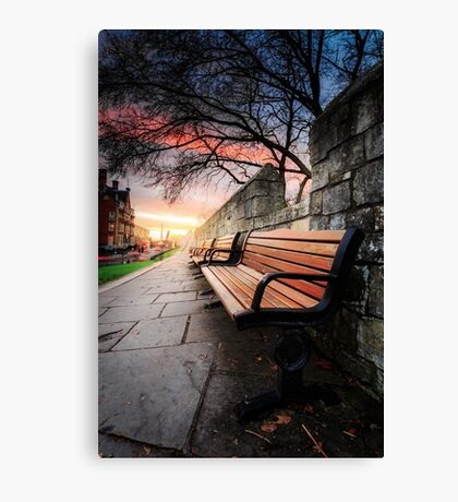 York Walls Bench's Canvas Print