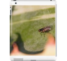 Fly on the leaf of agave iPad Case/Skin