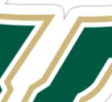 USF Bulls Sticker