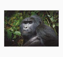 portraet of a silverback mountain gorilla, Bwindi, Uganda T-Shirt