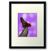 Brown Fluffy Rooster On A Fence With Sparkle Background Framed Print