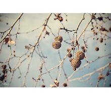 Calm skies Photographic Print